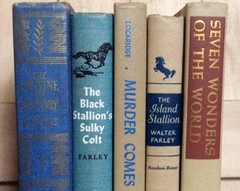 Set of Rust Beige & Blue Vintage Books