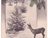 Vintage Hungarian Christmas Deer Tinted Postcard - interesting message
