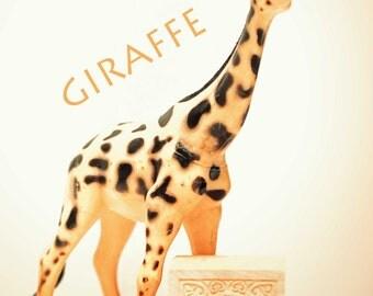 giraffe art, ABC art, toy photo,  nursery art, nursery decor, childs room decor, child room art, letter art, alphabet photo, alphabet art