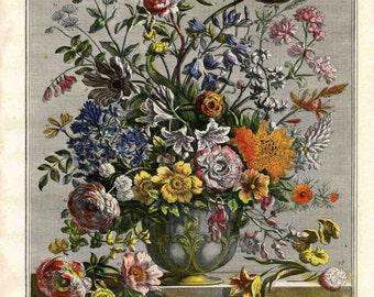 May Flower Botanical Illustration Art Print- Furber Casteel Floral- Unframed Bouquet Arrangement- newborn baby wedding anniversary gift idea