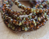 TORTOISE SEEDS .. 50 Picasso Czech Glass Tri-Cut Seed Bead Mix Size 6/0 (4871-st)