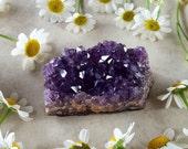 Amethyst Cluster - Amethyst Crystal from Uruguay - Raw Amethyst Cluster - Dark Purple Amethyst - Deep Purple Mineral Specimen