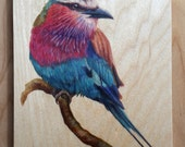 Lilac - Breasted Roller : Hand-Embellished Print on Wood