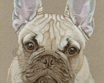 French Bulldog Fawn print