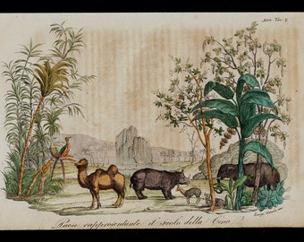 1823 Antique print of Landscape and animals representative of China, Camel, rhino, elephant, fine hand colored engraving 193 years old