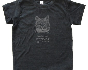 Youth Funny Cat Shirt - Feline Pawsome Right Meow T Shirt - Child / Boy / Girl Tri Blend Tee Hand Printed Size 2T 4T 6 8 10 12