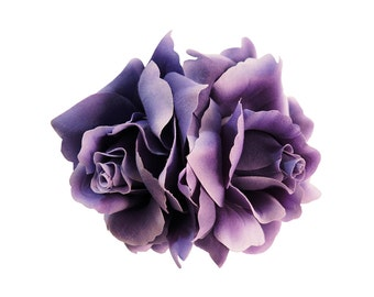 Double Dark Purple Rose Flower Hair Clip
