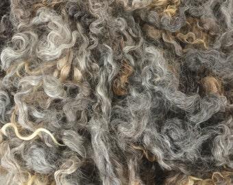 Wensleydale Locks Washed Wool Fleece Spinning and Felting Fiber Natural Grey Silver