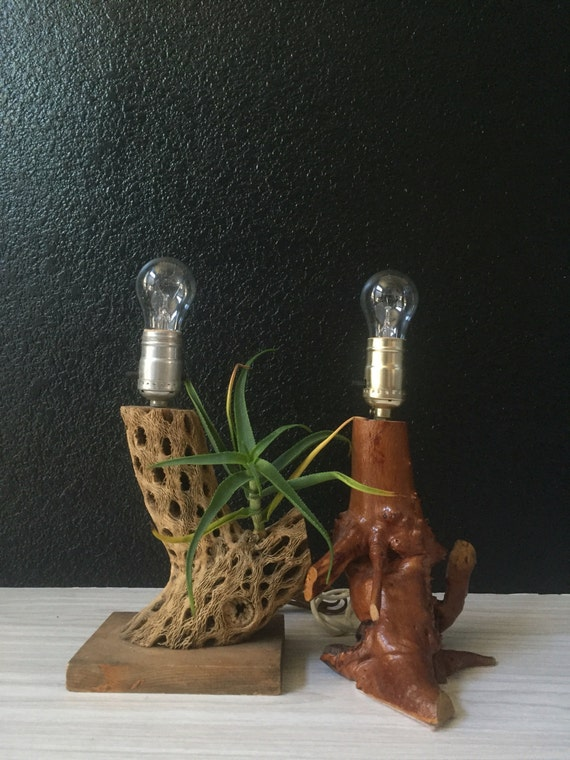 natural vintage wood cholla cactus lamp / beach house decor
