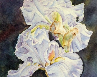 Blue Irises Original Watercolor Painting matted to 12x16 flowers, floral, blue, violet, yellow