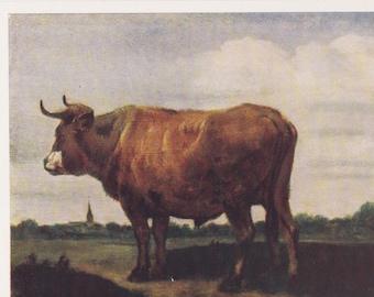 "Paulus Potter ""Bull"" Postcard -- 1963. Condition 9/10"