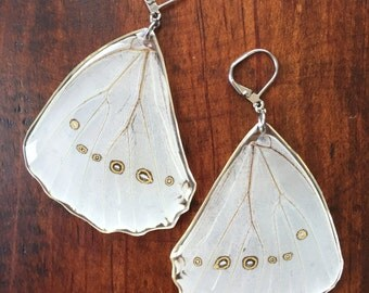 Real Butterfly Earrings. White Morpho in Resin Earrings. Nature Jewelry. White Butterfly Earrings. Stainless Steel.