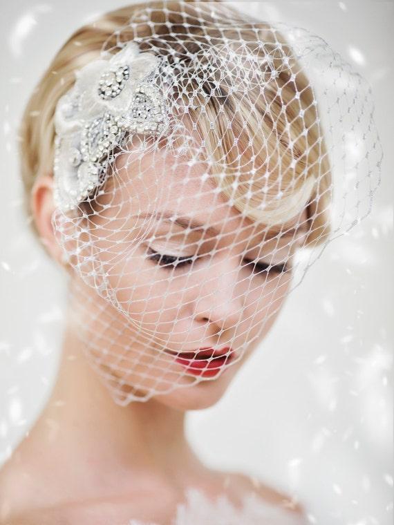 Wedding veil christmas birdcage silver crystal