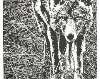 The Trickster - Yosemite, Coyote in Sentinel Meadow Fine Art Linocut Print 24 x 18 Black & White, Relief Print, Anniversary Series, NPS