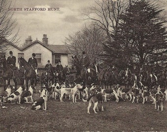 North Stafford Hunt - Antique 1900s Photographic Foxhunt Meet Postcard