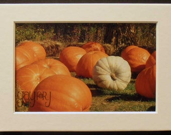 Matted Art Print - Fall Colors Collection - Matted Print - Pumpkins