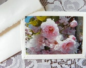 CHERRY BLOSSOM, Pink Card, Floral Photo, Handmade Greeting Card; coordinating decorative envelope