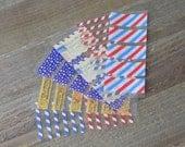 WS16   Pre-Cut Washi Samples (for Erin Condren)    Planner Stickers