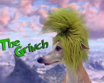 Inspired by The Grinch! Character hat for dogs and cats!