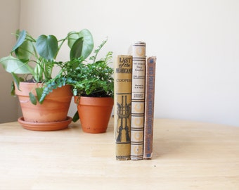 Set of Three Classic American Frontier Themed Books - Neutral Tones