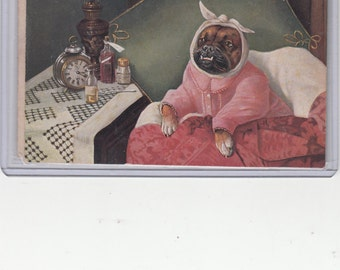Undivided Back Postcard Bulldog Woman Has A Toothache