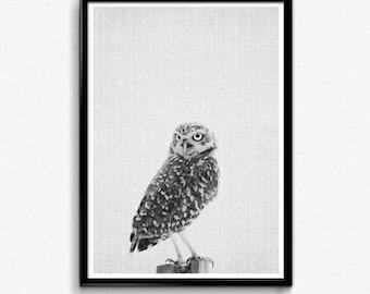 Woodlands Animal, Owl Tree Wall Decal, Owl Tree Decal, Forest Animals Decal, Forest Owl Art Print, Forest Owl Wall Art, Owl And Tree Decal