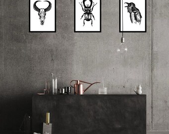 Collection of A4 Drawing - Original Artwork Illustrations on Paper