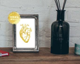 Heart Anatomy - Anatomy Heart - Best Seller - Anatomy Art - Med Student Gift - Medical Art - Medical Office Decor - Medical Student Gift