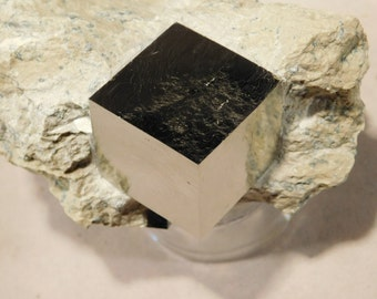 One BIG & Two Little 100% Natural Entwined Pyrite Crystal Cubes! Spain 297gr e