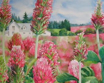 Red Clover Farm