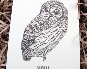 Mr. Owly Happy Birthday