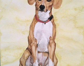 Watercolor Single Dog Portrait with Frame
