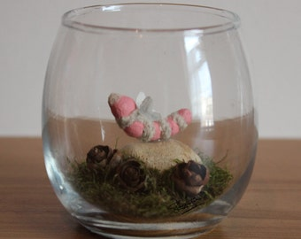 Real Woodland Caterpillar Terrarium - Fairy Caterpillar. Handmade, Ornamental Gift ~
