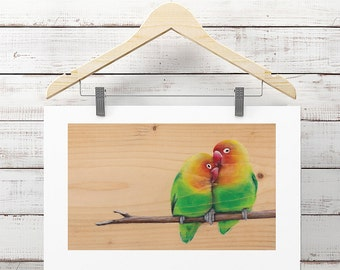Wild Love - High Quality Print, Animal Illustration, Love Bird Wall Art, Couple Room Decor