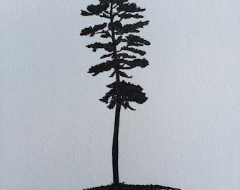 The pine tree.