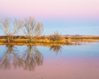 Fine Art Photography | Pink, Sky, Reflection, Serene, tranquility, twilight, Decor, Nature Photograph, Dreamy Image