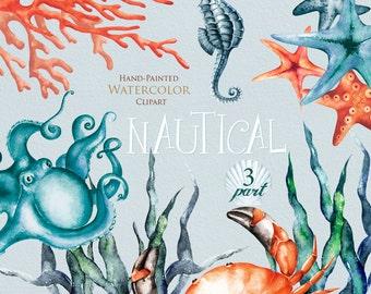 Nautical watercolor clipart. Marine. Ocean. Individual PNG elements. Crab, Octopus, Seahorse, Seaweed, Corals, Starfish, invitation