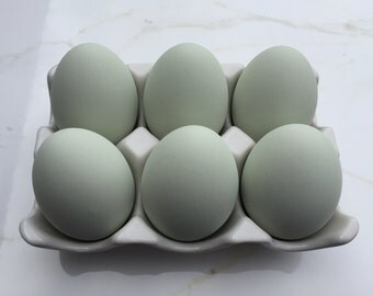Ceramic Eggs, 6 Teal Chicken Eggs