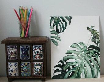 Monstera Plant - Art Print