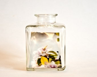 """Picture-in-bottle """"Apple Blossoms"""""""