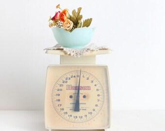 Vintage Kitchen Scale, Hanson Scale, 25 Pound Capacity, Plastic Scale