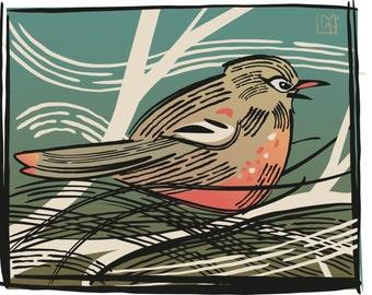 Robin Graphic Giclee Print