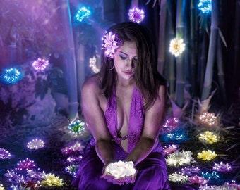 Fairy Flower Four Pack