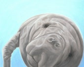 Manatee Art Print, Manatee Gift, Ocean Decor, Florida Art - Fine Art Giclee Print of an Original Pawstel