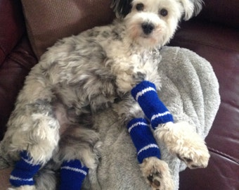 Custom Dog leg warmers...only to be used where colours have been discussed and agreed by convo