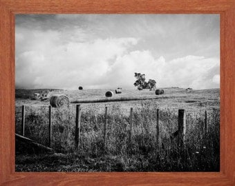 black and white photograph, haybales, rural landscape, storm clouds, digital download