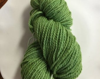 Green SuperFine Merino Wool Hand Dyed Yarn