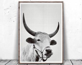 Bull Print, Bull Photo Print, Nursery Animal Print, Black and White Animal Print, Instant Download, bull, Cow Printable, Bull Photography