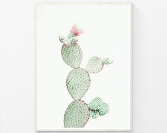 Cactus Print, Nursery wall art prints, Cactus Art, Pastel Gray Print, digital print, Neutral Art, Cactus Decor, Cacti Print, Neutral Print