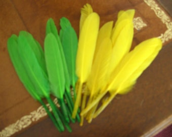 20 Indian green and yellow feathers ref2465